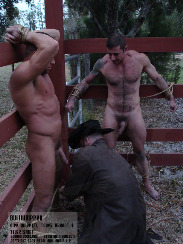 from Reed gay bullwhipped video